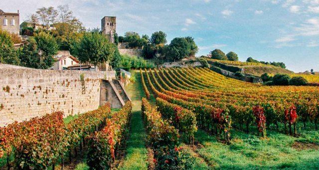 Áreas ideais para plantar uvas inevitavelmente se deslocarão para o norte, desalojando Bordeaux (foto) e Alsace, colinas francesas que um dia já foram a receita do vinho perfeito. Foto reprodução